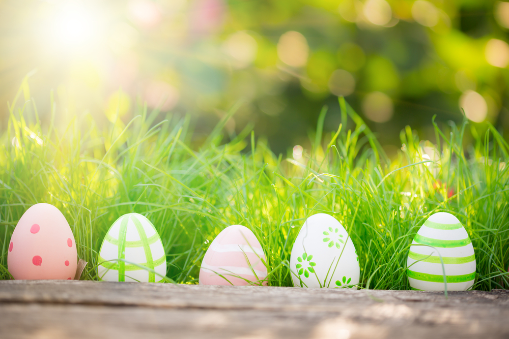 Easter Eggs in green grass with sun shining, beautiful Spring day