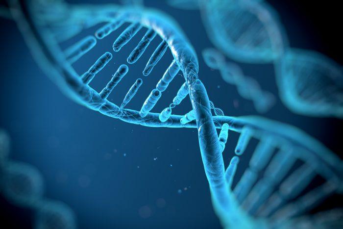 Genes-affect-cavities