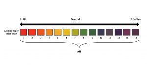shows a standard ph scale for testing the acidity of pool water