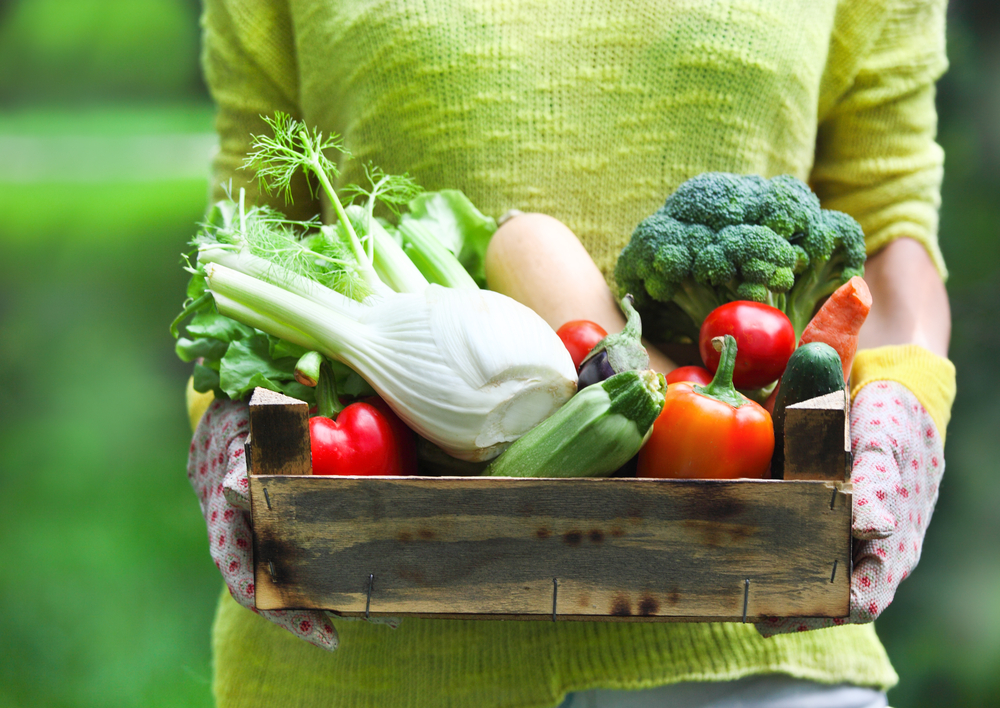 woman holding box of organic vegetables: broccoli, tomatoes, peppers